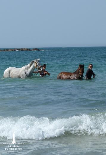 la maison du bord de mer, location de vacances 5 étoiles à Santec, mer, plage, piscine, jardin, paysages, Bretagne, Finistère, pêches, location, vacances, famille